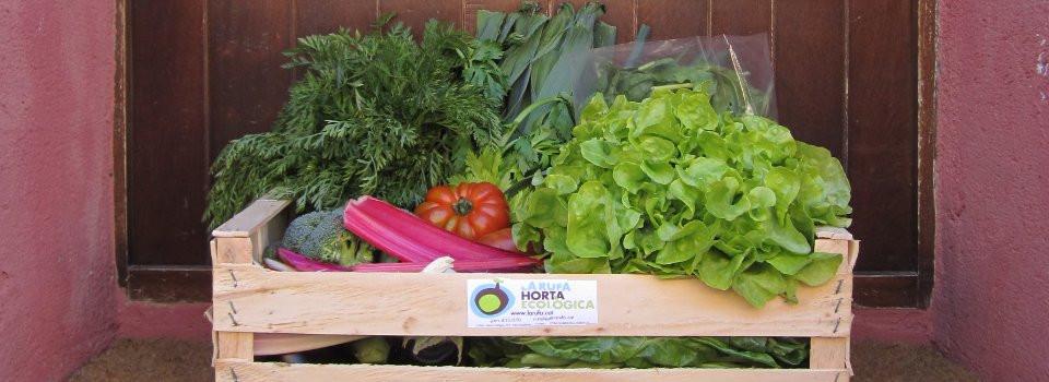 Cistella de verdura i fruita de La Rufa Horta Ecològica